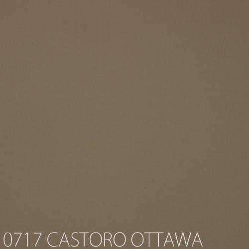 0717-CASTORO-OTTAWA